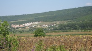 Plots of 1900 and 6644 sq.m. for sale, close to Albena, Bulgaria