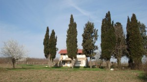 Plot of 11000 sq.m. with an old house and panoramic sea view! Kantara area , Varna, Bulgaria